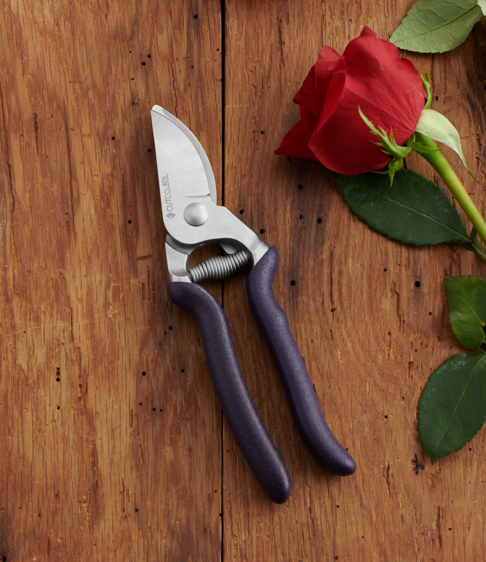 bypass pruners - Garden Shears